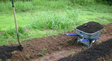 Preparing the seed bed